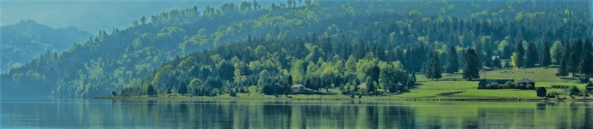 Lake Image_Penne Profile Cover.jpeg
