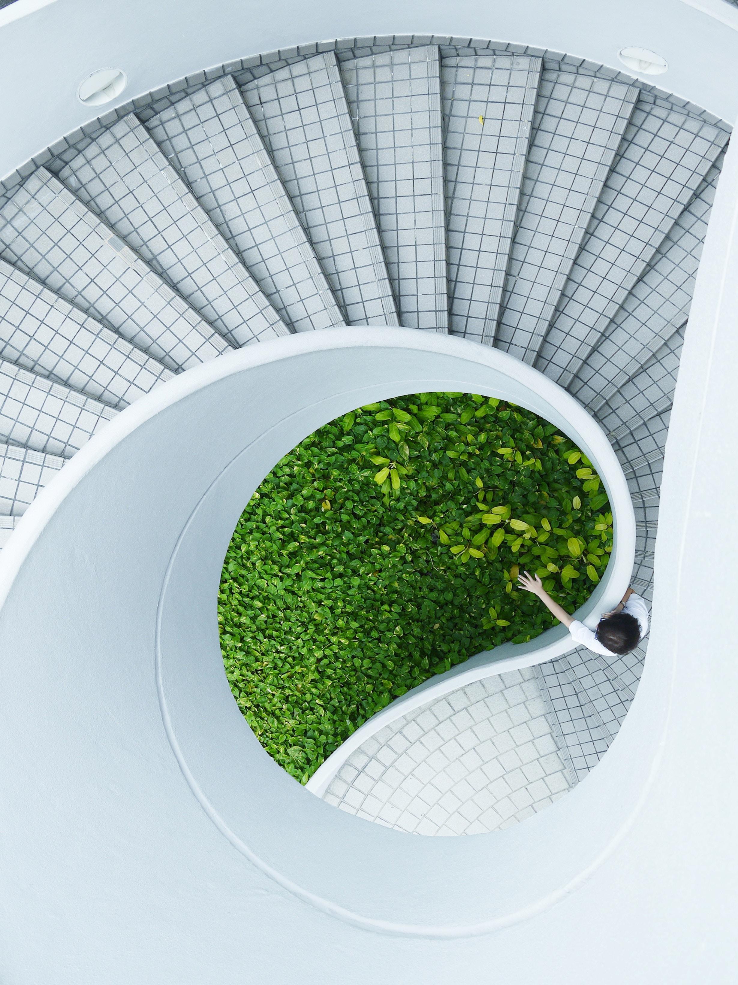 homepage growth stairs-1.jpg