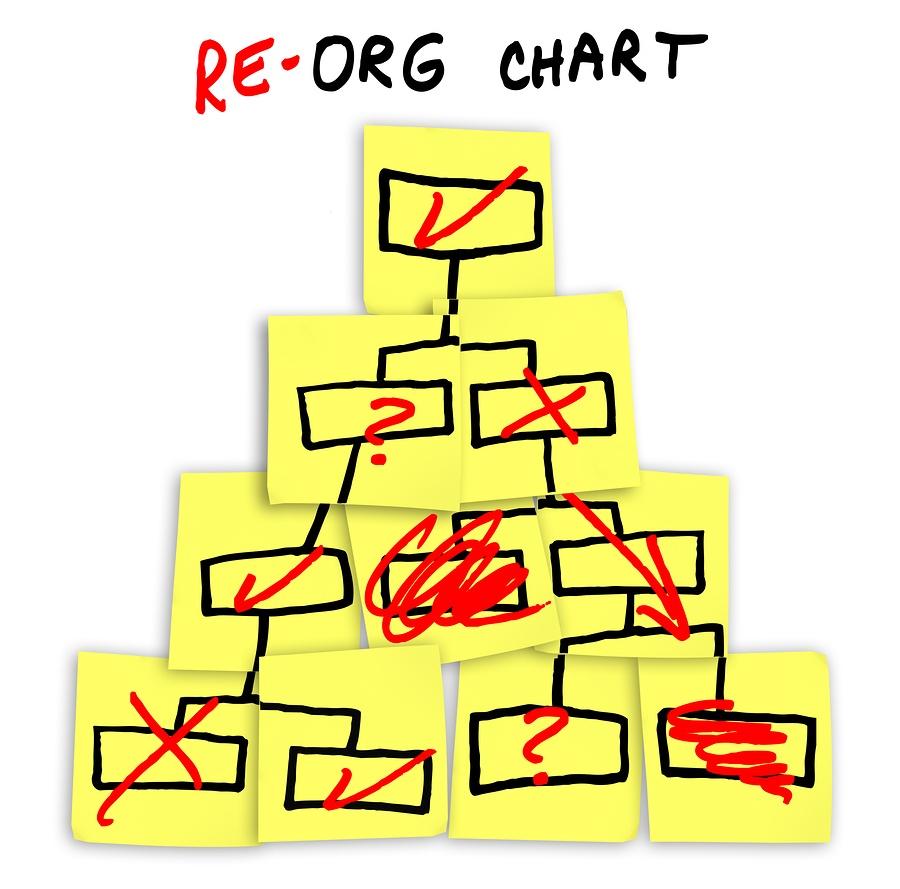 Credit Union Organizational structure image chart