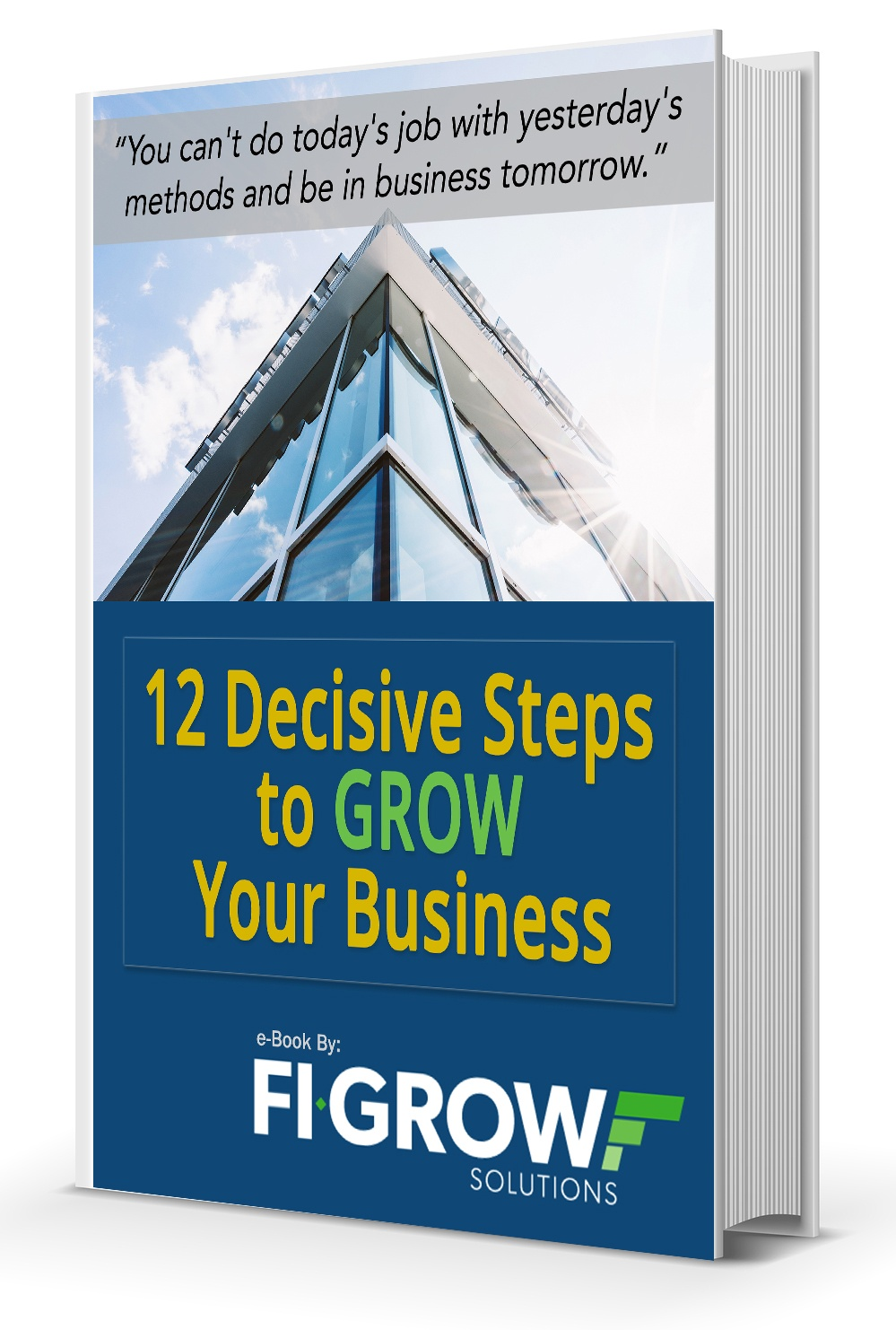 12 steps to grow your business ebook image